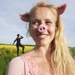Schwein oder Nichtschwein